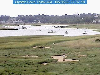 wellfleet-oyster-cove.jpg